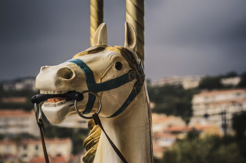 Close-up of carousel horse at amusement park