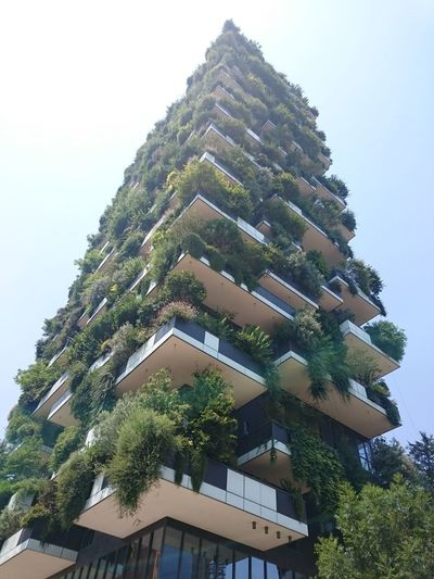 One of the two green skyscrapers of Milano Trees Vertical Trees Green Skyscrapers Green Building City Skyscraper Modern Cityscape Luxury Roof Sky Architecture Building Exterior