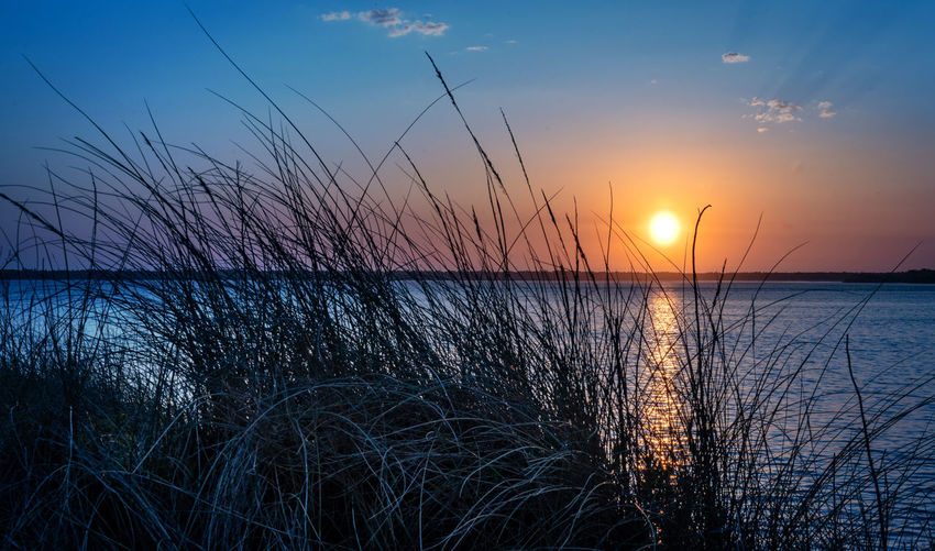 Sky Sunset Water Scenics - Nature Beauty In Nature Tranquility Plant Tranquil Scene No People Sea Nature Grass Non-urban Scene Horizon Sun Horizon Over Water Silhouette Idyllic Beach Outdoors Marram Grass