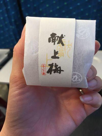 Kyoto Ume Umeboshi Love おうすの里