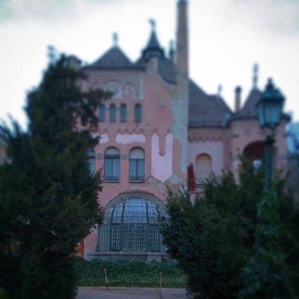 Architecture Budapest Glass Ilovebudapest Winter Garden Wintergarden