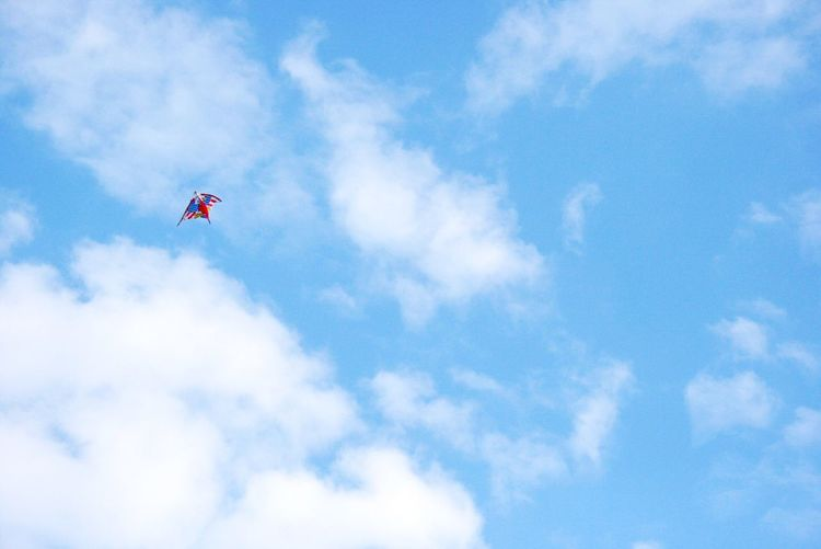 凧揚げ🐙 Low Angle View Sky Cloud - Sky Flying Blue Patriotism Mid-air Kite Day Nature No People Outdoors Beauty In Nature OneDay. Japan Japan Photography Japaneseculture 凧揚げ
