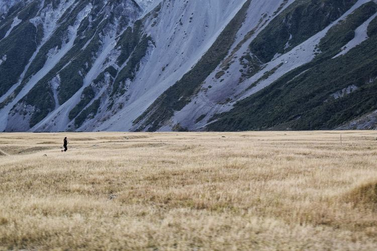 Tranquil Scene Landscape Tranquility Scenics Cold Temperature Grass Unrecognizable Person Non-urban Scene Nature Field Beauty In Nature Remote Outdoors Solitude Growth Day Distant Running Exercise Cardio New Zealand Landscape New Zealand People And Places