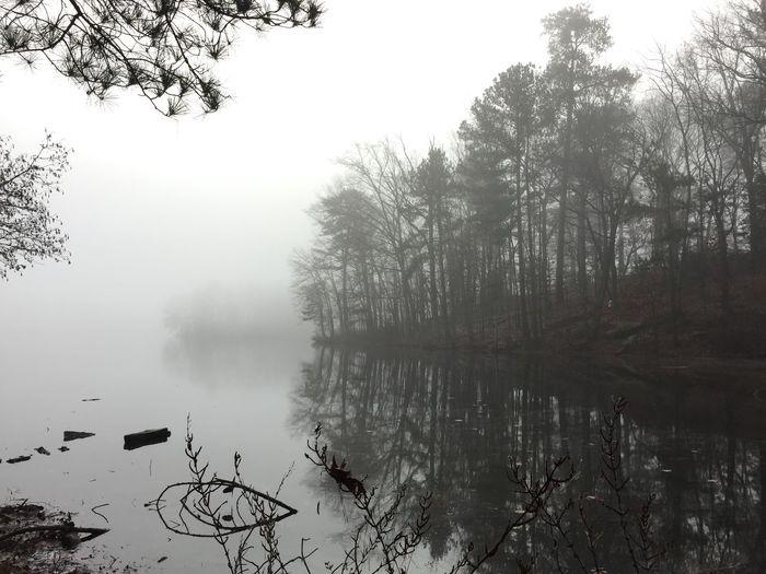 Stone Mountain GA Lakeshore Lakeview Foggy Morning Fog