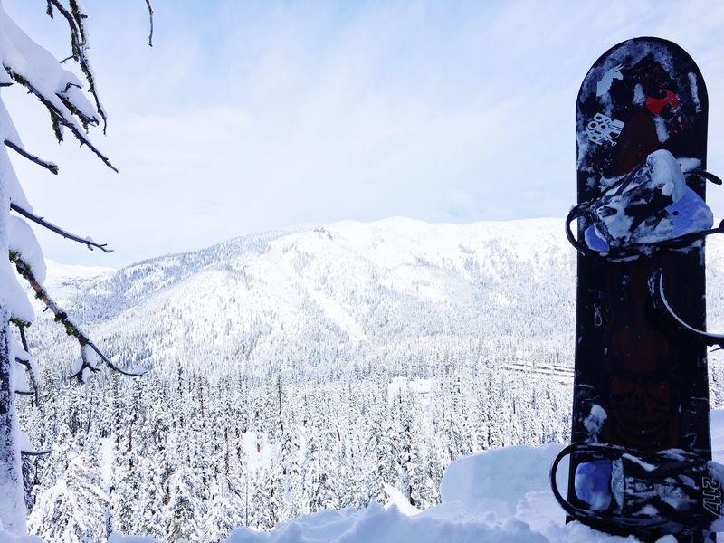Tahoe Winter Snow Snowboarding Arbor