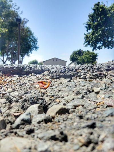 Deep Dish Pothole Surface Level Potholes Stuck In A Hole Selective Focus Street Below Ground Pothole Asphalt Gravel Stuck Outdoors Creativity Perspective Highways&Freeways Eye4photography  Eyeemphotography Eyeem Market EyeEm ForTheLoveOfPhotography Photography Is My Therapy From My Point Of View Close-up