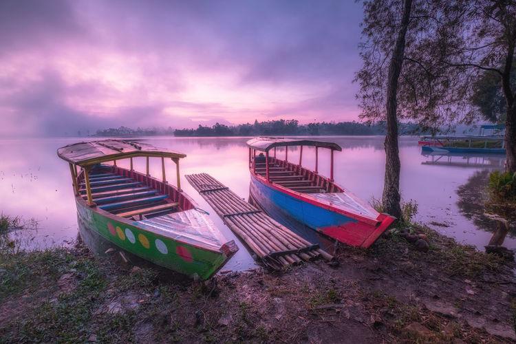 The Boats at