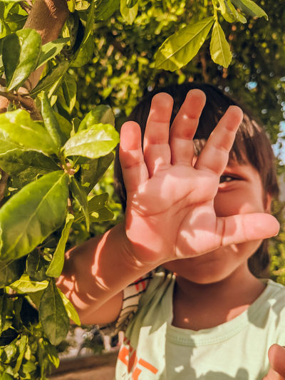 Close-up of hands holding leaves