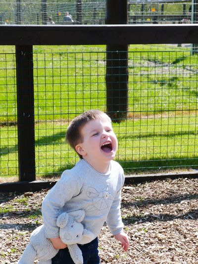 Meniacle laughing by the lions The Portraitist - 2016 EyeEm Awards Zoo Lion Lions Kids Toddler  Cute Happy Joy Pure Joy Happy Funny