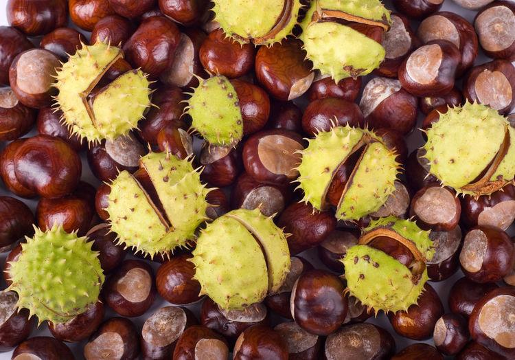 Full frame shot of chestnuts
