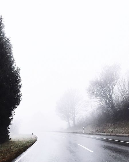 Foggy day and a mystical road. Tree Winter Cold Temperature Snow Nature Weather Clear Sky Beauty In Nature Tranquility Tranquil Scene Day The Way Forward No People Landscape Outdoors Sky Fog Road Foggy Day