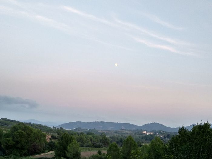 Moon Silent Moment Relaxing Luna Anocheciendo Silence Of Nature EyeEmNewHere Tree Mountain Fog Forest Tree Area Sky Landscape Mountain Range Cloud - Sky