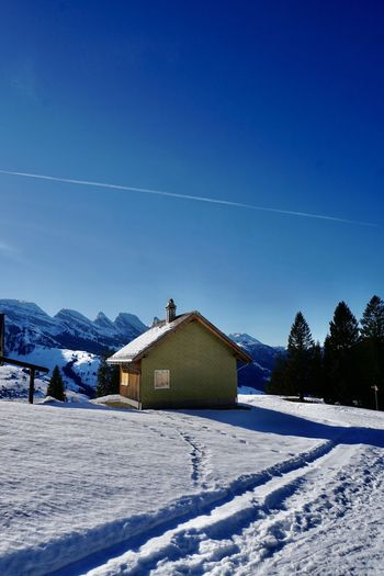 Snow covered houses and trees against blue sky