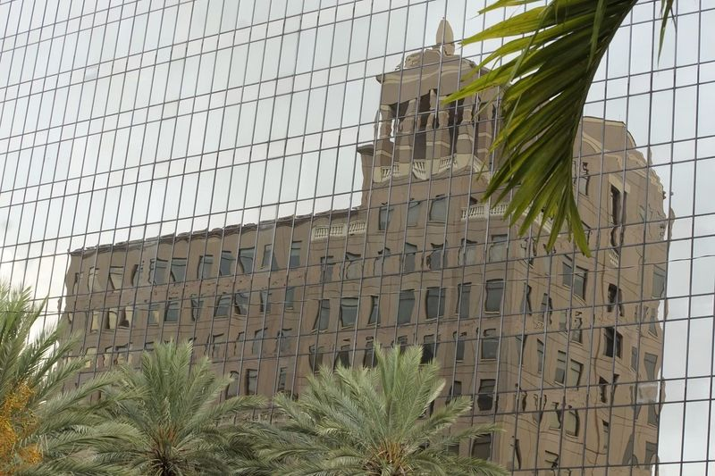 Sillouettes Architecture Building Exterior Window Outdoors Palm Tree City Cityscape Urban Skyline Façade