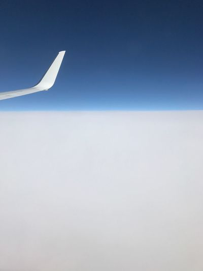 Copy Space Clear Sky Blue No People Airplane Sky Low Angle View Nature Day Outdoors Airplane Wing