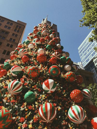 Christmas tree in Sydney Built Structure Decoration Building Exterior Architecture Low Angle View No People Building Celebration christmas tree
