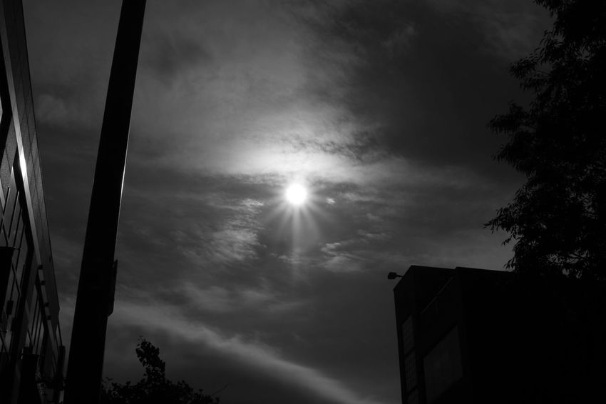 Low Angle View Sky No People Outdoors Cloud - Sky Night Tree Nature Black And White Photography Heatwave Sunstars Low Contrast Side Angle Canon Rebel T5 Sigma 17-70mm F2.8-4 Zeiss Pop Micro Contrast Travel Destinations Midday Sunlight