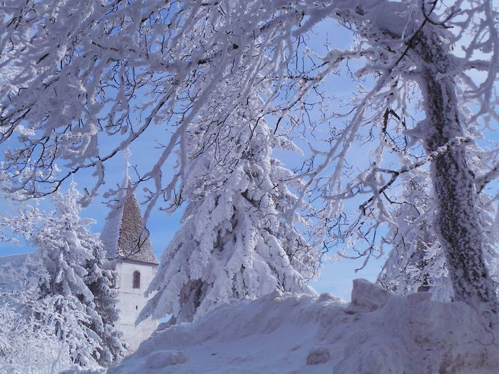 Church Church Tower Pohorje Slovenia Slovenia Slovenia Scapes Winter Areh Bare Tree Beauty In Nature Branch Cold Temperature Day Frozen Frozen Nature Nature No People Outdoors Pohorje Scenics Sky Snow Tranquility Tree Winter The Traveler - 2018 EyeEm Awards