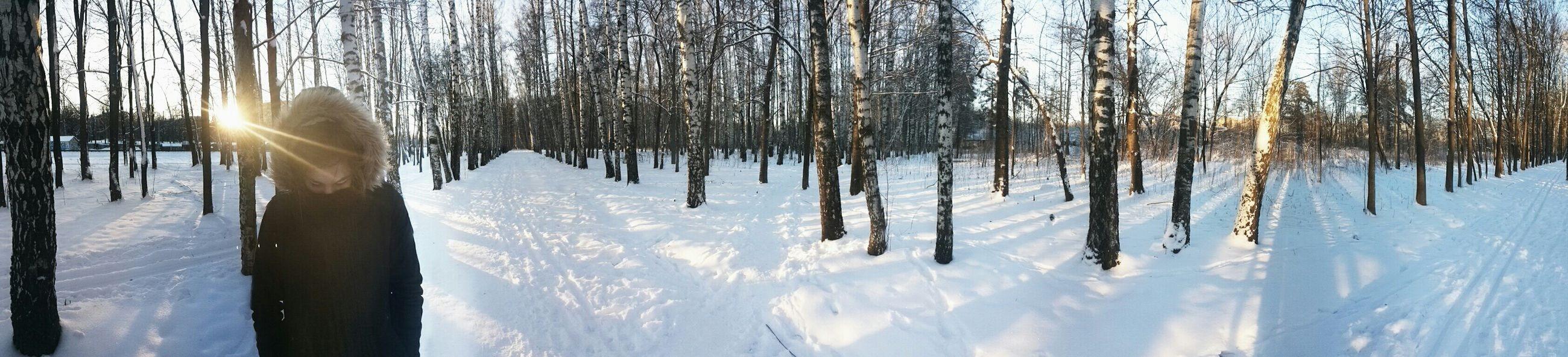 Sky Winter In The Forest Girlfriend