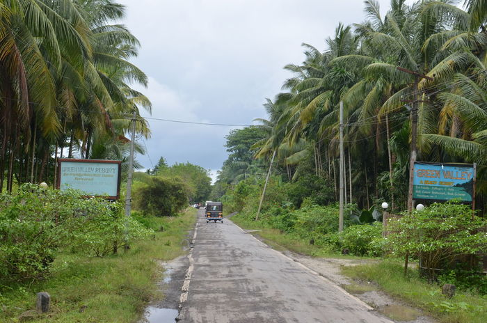 Andaman And Nicobar Islands Andamanislands Andamans Green Vally Havelockisland India Jungel Jungle Street Travel Traveling
