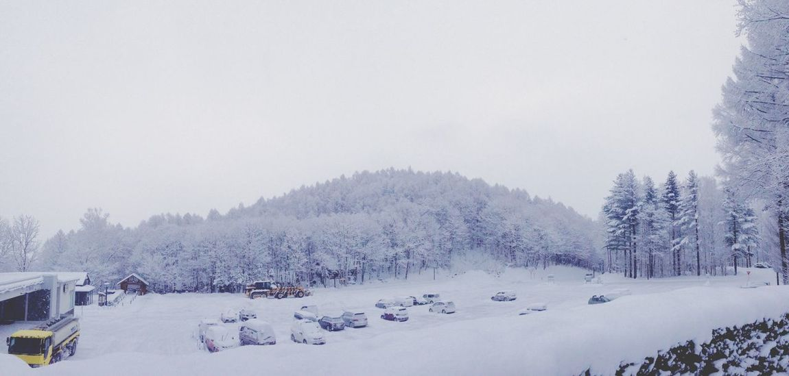 Garageimg Snow Cold Frozen Panorama Winter Nature Forest View Outdoors Landscape