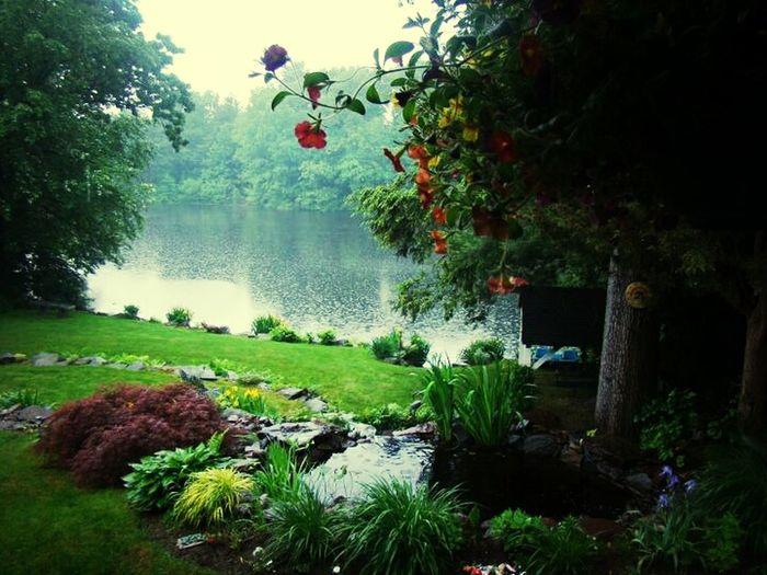 Summer Rainy Day Moms Yard