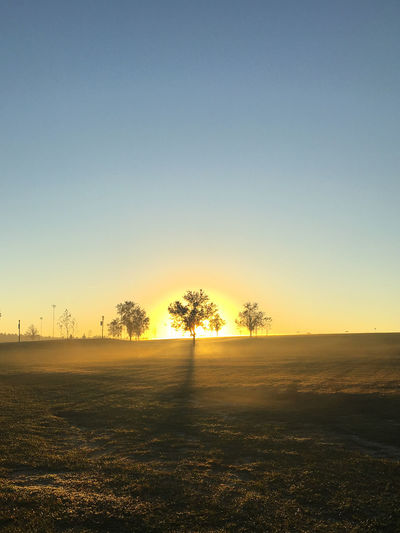 Morning glow Beauty In Nature Clear Sky Day Field Grass Landscape Nature No People Outdoors Scenics Sky Sunset Tranquil Scene Tranquility Tree