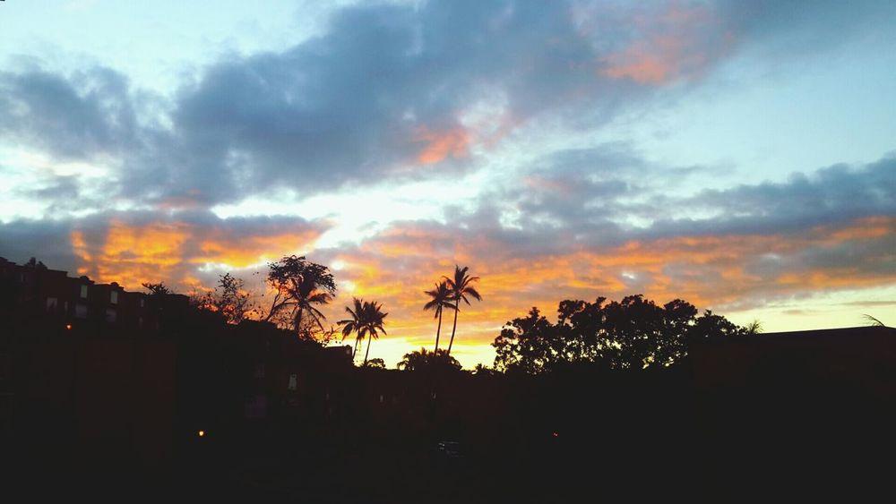 Sunset Traveling Mauritius Beautiful Surroundings