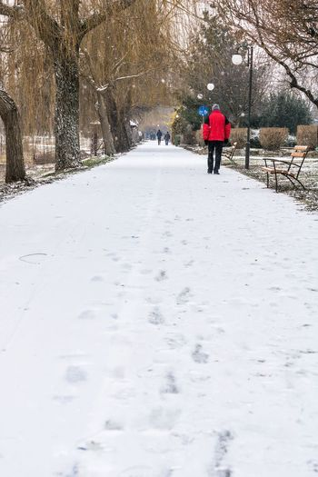 Rear view of person walking on snow covered footpath