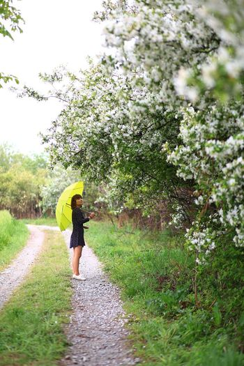 Side view of woman with umbrella standing on footpath in park