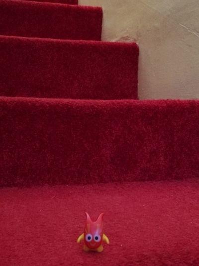 Little Friend On Stairway