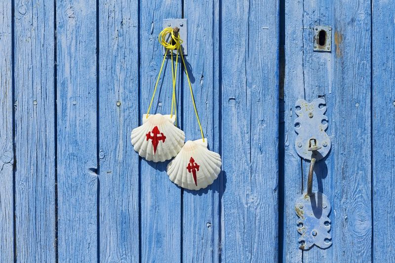 Pilgrim scallop shells on blue wooden door