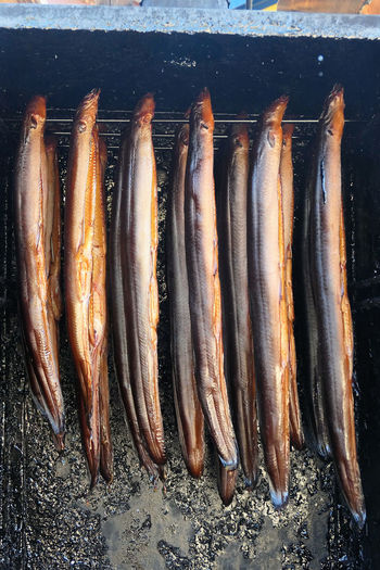 fresh smoked eels fish in oven. smokehouse. Räucherfisch Smoke Smoked Smokehouse Aal Animal Themes Eel Eel Fish Eelfish Eels Fish Food Food And Drink Freshness Hanging Healthy Eating In A Row Preparing Food Raw Food Räucheraal Seafood Side By Side