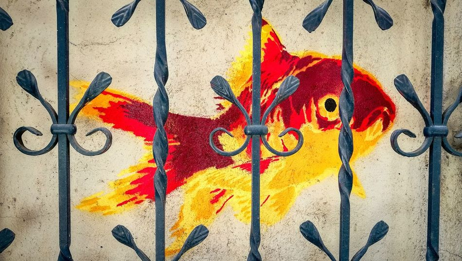 Carpe diem Fish Fishnet Carp Graffiti Street Art Multi Colored Outdoors Backgrounds No People Close-up Art And Craft City Street City Life EyEmNewHere EyeEm Gallery Barcelona