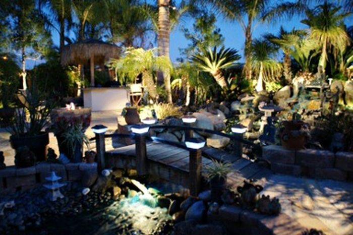 Ctai Pacific Greenscape Landscape Outdoors Outdoor Photography Garden Gardening
