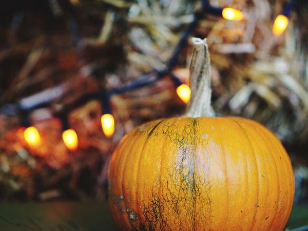 EyeEm Selects Illuminated Celebration Candle Focus On Foreground Pumpkin Halloween No People Night Celebration Event Close-up Tradition Food Jack O Lantern