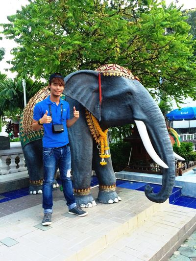 with the elephant chang