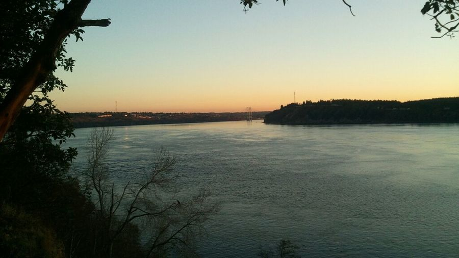 Narrows Bridge View