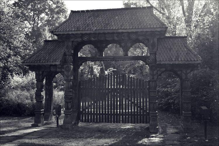 Gate EyeEm