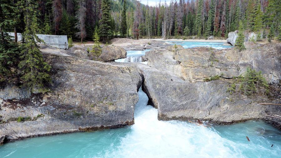 River flowing amidst rocks at yoho national park