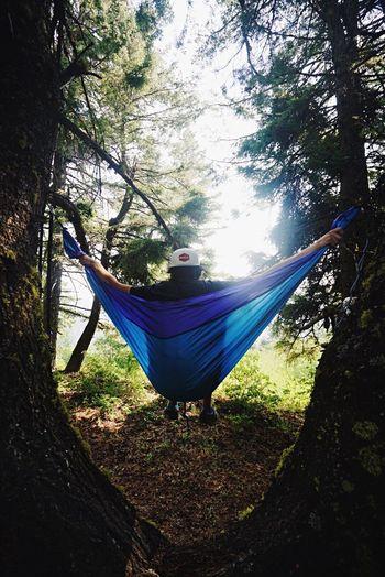 Man in hammock at park