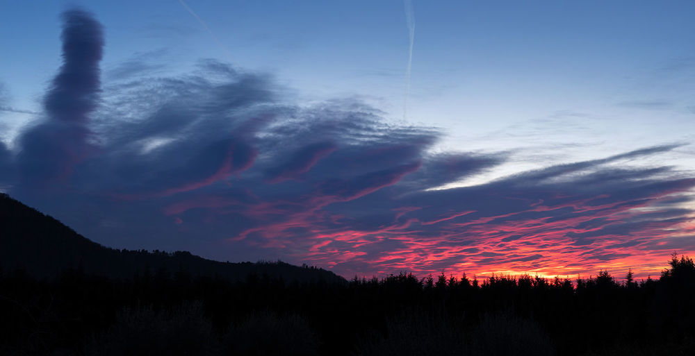 A nice sunset in Franciacorta, Erbusco, with shades of color from blue to pink. Sky Cloud - Sky Beauty In Nature Scenics - Nature Sunset Tranquil Scene Nature Tranquility No People Tree Orange Color Tramonto Italy Franciacorta