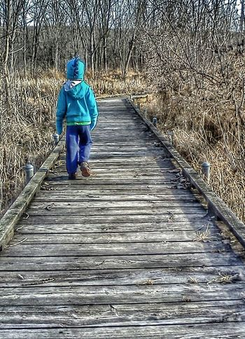 Boy walking on wooden path in nature reserve in fall Walk Walking Walking Around Walking Away Nature Trails Nature Trail Hiking Trail Nature Path Autumn Fall Color Childhood Kids Being Kids Editorial  Childhood Memories Color Photography Colors Nature Photography People Boy Children Hiking Kids Having Fun Kid Kids Playing