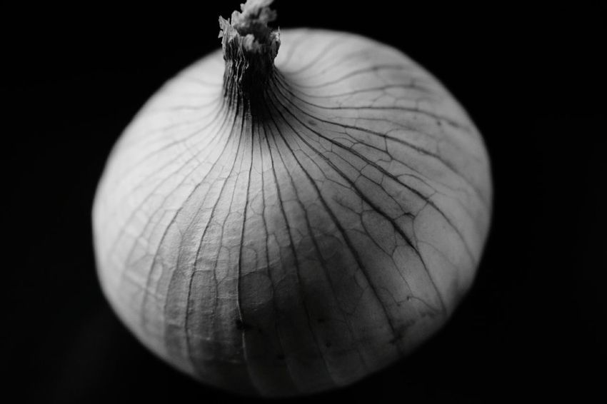 Food Onion Still Life Healthy Eating Healthyfood Black And White Black And White Photography Macro Close-up Black Background Nature No People Day