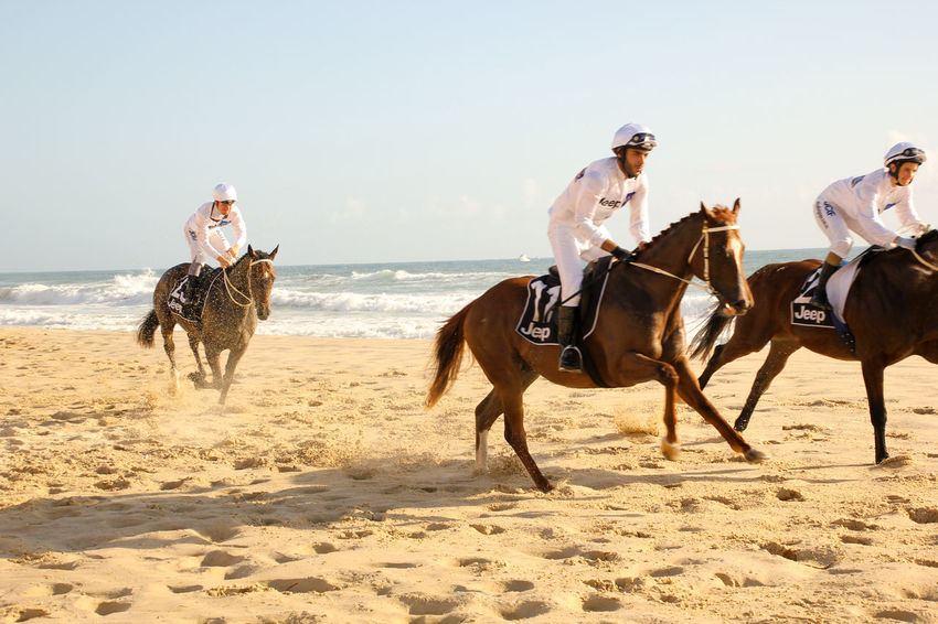 Adult Adventure Athlete Beach Clear Sky Competition Full Length Horizon Over Water Horse Horse Photography  Horse Riding Horseback Riding Horses Jockey Motion Outdoors People Race Racing Riding Sand Sport Summer Sunlight Three Animals