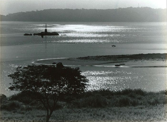 Another photo of the old lighthouse! guanabara bay Baia da Guanabara Rio de Janeiro brasil Lighthouse oldphoto scannedphoto pentax spII sea water Nature beach scenics outdoors beauty in Nature Tree blackandwhite black and white 🇧🇷 Guanabara Bay Baia Da Guanabara Rio De Janeiro Brasil Lighthouse Oldphoto Scannedphoto Pentax SpII Sea Water Nature Beach Scenics Outdoors Beauty In Nature Tree Blackandwhite Black And White Landscapes