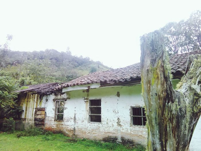 Abandonada. Tree Built Structure Building Exterior No People Architecture Day House Sky Nature Outdoors Colors Antique Houses Windows Mountain Green Oldhouse Vintage