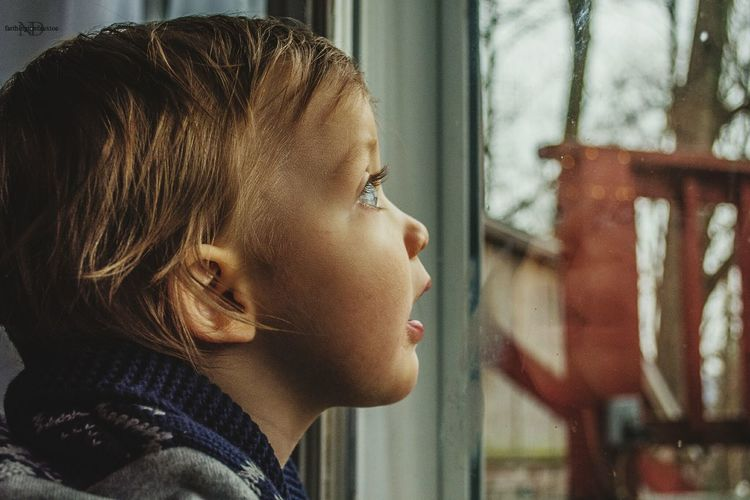 Awe. Child Contemplation Side View Childhood Looking Through Window Human Face Close-up Day People Eye4photography  EyeEm Best Shots Tranquility Window Boy Baby Youth Awe Portrait Portrait Photography Portraiture Portraits Kentucky  Kentuckyboy Children Children Photography