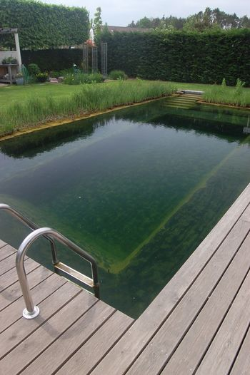 Pool area Hand Built Wood Relaxing Chillout Pool Swimming Pool Water Sky Standing Water