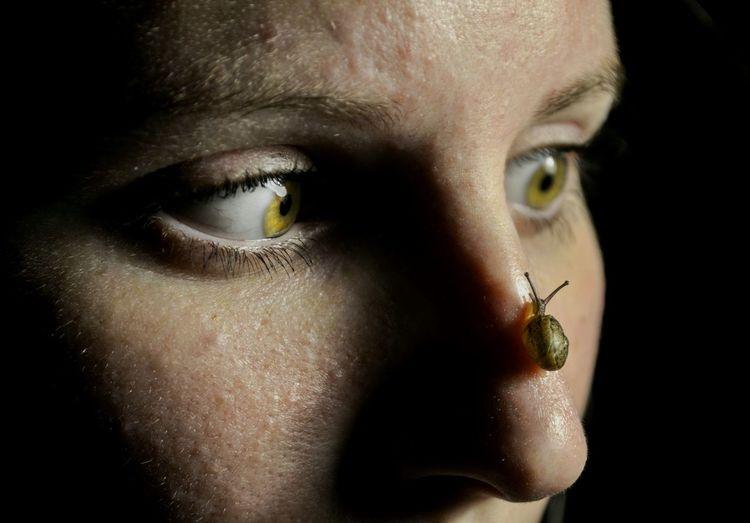 Human Face Human Eye Face To Face Snails🐌 Love Love Animals